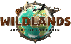 Wildlands Adventure Zoo Arrangement